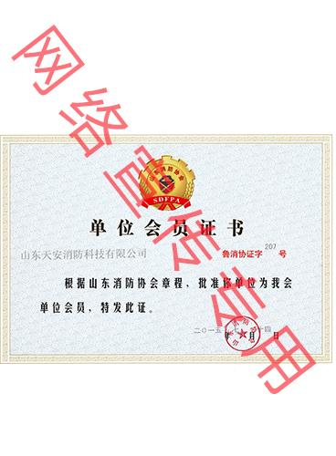 山东消防协会